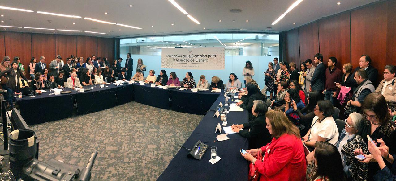 """""""Las mujeres y los pueblos indígenas serán prioridad en el Senado"""": MFB"""