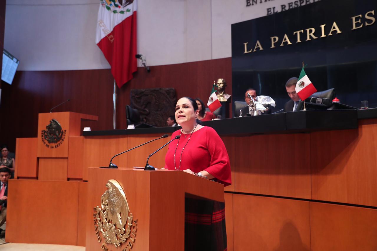 Exhorto a organismos autónomos a sumarse al Plan de Austeridad: Sen. Mónica Fernández Balboa
